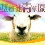 iGreenpastures 基督徒青草原 Profile Picture